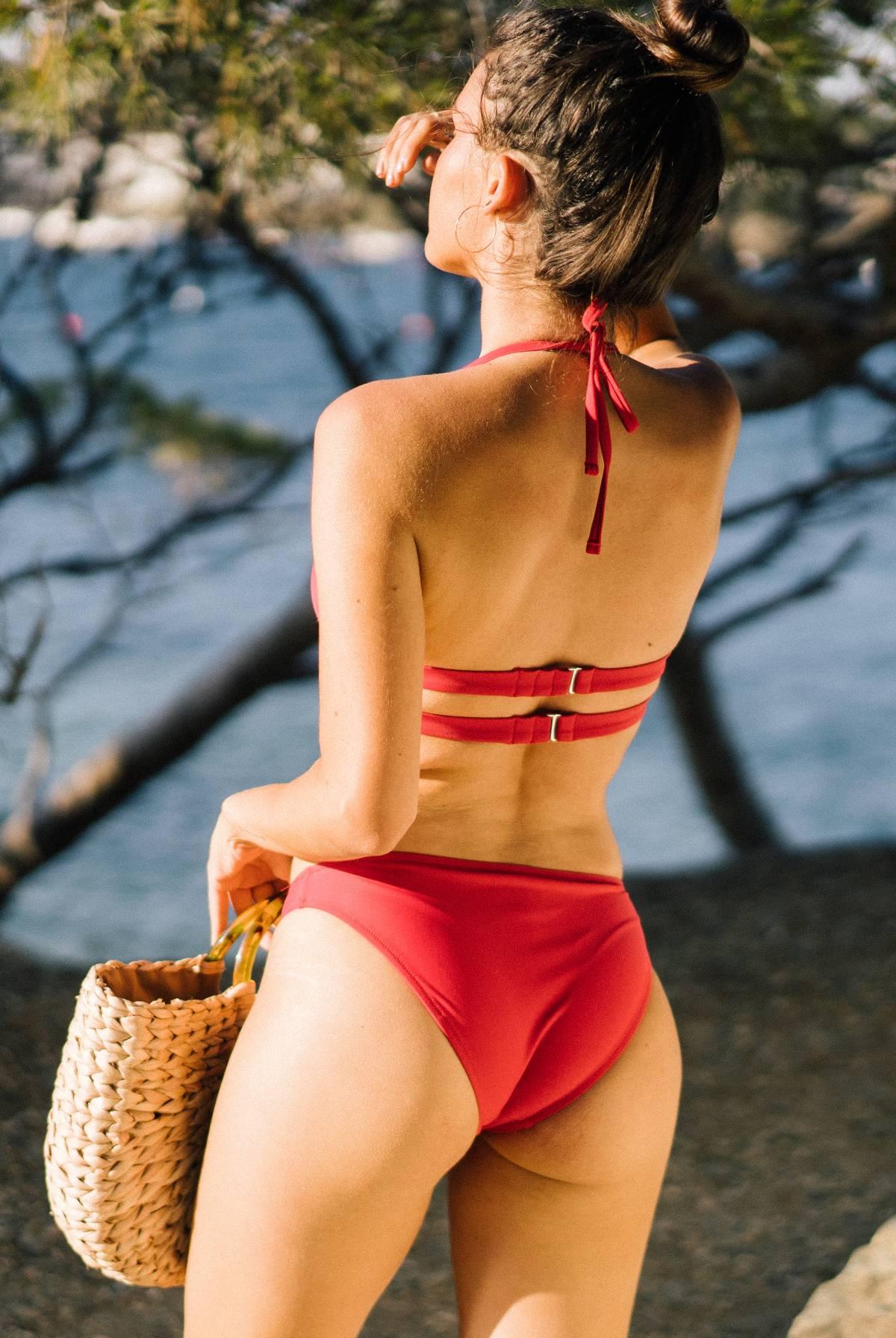Bas Iris Berry